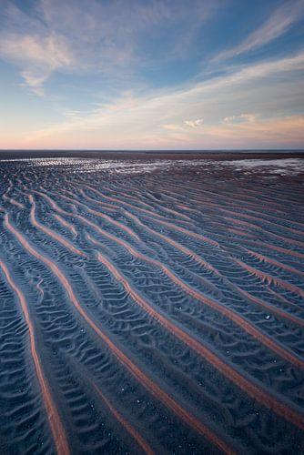 Maasvlakte 20
