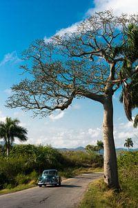 Pinar del Rio, Cuba van