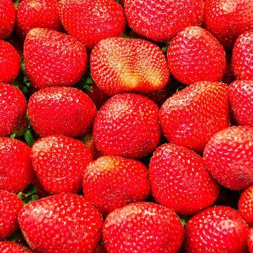 erdbeeren, rot, obst von Leo van Maanen