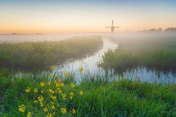 Nederlands polderlandschap met molens van Original Mostert Photography