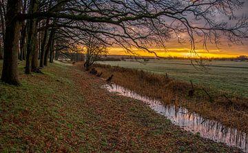 Überschwemmungsgebiete bei Amerongen von Robin Pics (verliefd op Utrecht)