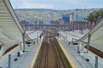 Symmetrische foto van 2 sporen op een station van Patrick Verhoef