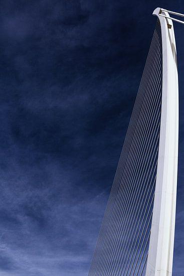 De 'Assut de l'Or Bridge' - kabelbrug in Valencia (kleur) van Wesley Flaman
