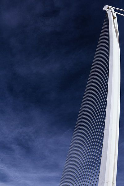 De 'Assut de l'Or Bridge' - kabelbrug in Valencia (kleur)