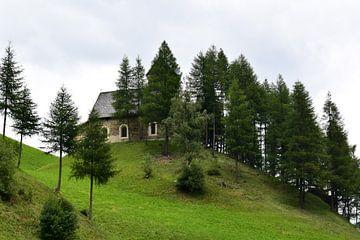 Haus auf dem Hügel von Celyn Vries