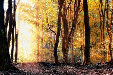 Bos in goud von Rigo Meens