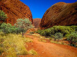 Vallei van de winden, in de outback van Australië.