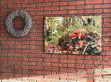 Klantfoto: Die mooie herfst ,....... van Hans Viveen, op canvas