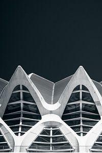 Calatrava shapes