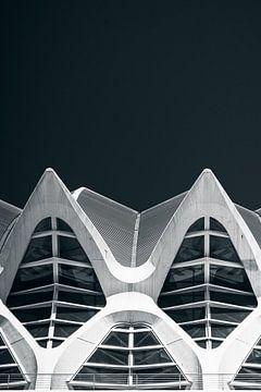 Calatrava shapes van Martijn Kort