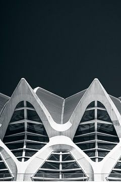 Calatrava shapes sur Martijn Kort