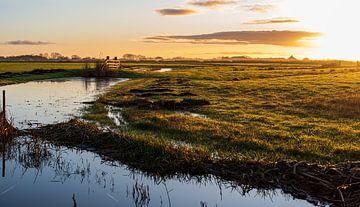 Vroege zon in de polder van Rob Donders Beeldende kunst