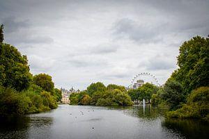 Park in Londen met zicht op Buckingham Palace en de London Eye van Marcel Alsemgeest