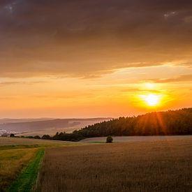 Zonsondergang boven Duitse velden van Wildfotografie NL