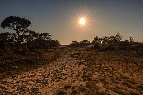 Gouden uur bij zandverstuiving