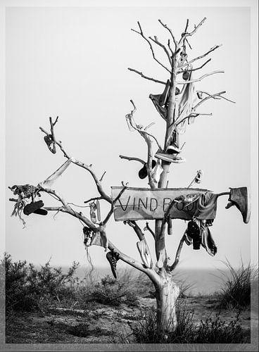 vindboom van