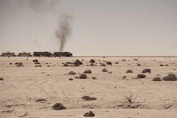 Desert train van Studio Wanderlove