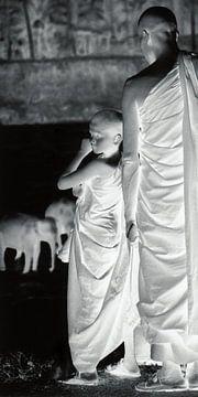 Tafel 1 der Diptychon-Mönche beim Baden von Elefanten von Johan Michielsen