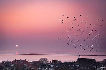 Zonsopkomst bij West-Terschelling met vogels, Nederland van Rietje Bulthuis