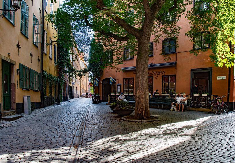 Stockholm,  Gamla Stan-under kastanjen van Cilia Brandts