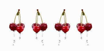 SF00987829 Vier kersentrosjes waar water van af druipt van BeeldigBeeld Food & Lifestyle