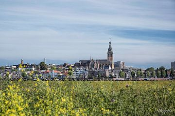 Nijmegen skyline van Roland Smanski
