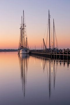 Veilig in de haven van Timothy Ricketts