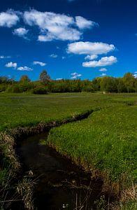 Bavelse lei gespiegeld in de wolken, Wolfslaar, Breda, Noord-Brabant, Holland, Nederland Afbeelding  van