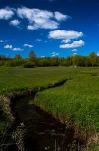 Bavelse lei gespiegeld in de wolken, Wolfslaar, Breda, Noord-Brabant, Holland, Nederland Afbeelding