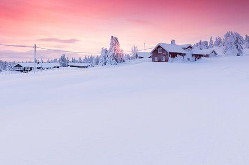 Snowbound Log Cabins and Firs near Lillehammer at Sunrise von Rob Kints