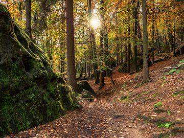 Quirlpromenade in der Sächsischen Schweiz -  Goldener Herbst von Pixelwerk