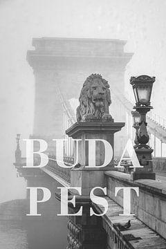 Steden in de regen: Boedapest van Christian Müringer