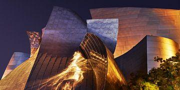 Walt Disney Hall van Keith Wilson Photography