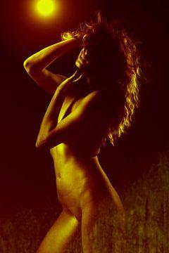 Nackte Frau in rot-gelbem Licht von william langeveld