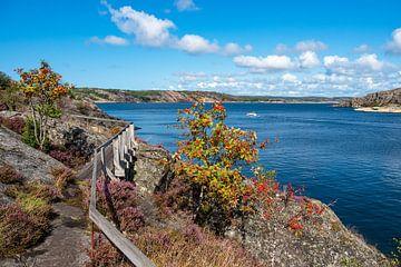 Vue de l'île de Dyrön en Suède sur Rico Ködder