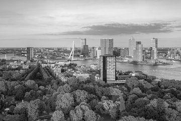Abendsonne in Rotterdam schwarz-weiß von Michael Valjak