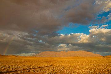 Regenboog in de Namib woestijn von Erwin van Liempd