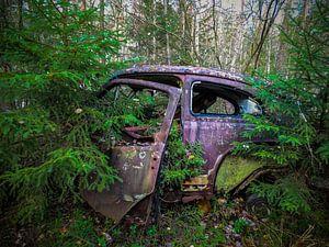 Verrostetes, verlassenes Auto in den Wäldern