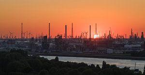 De zonsondergang in de haven van Antwerpen
