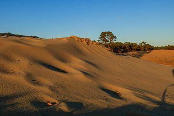 De rand van de woestijn van Bert Broekhuis