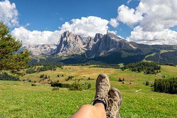 Alpe di Siusi van Tilo Grellmann | Photography