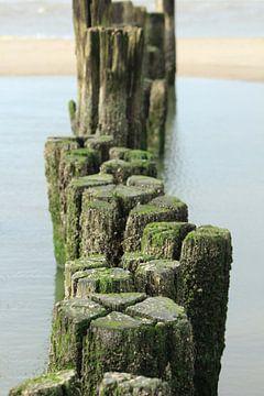strand palen van milan willems