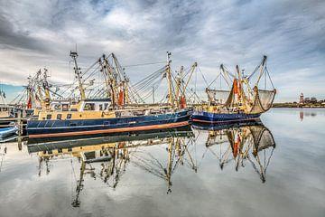 De haven van Stavoren, Friesland, op een windstille winterdag met vissersboten gespiegeld en de rode sur Harrie Muis