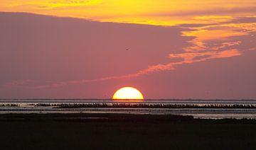 Zonsondergang waddenzee van Hollandse Kijker