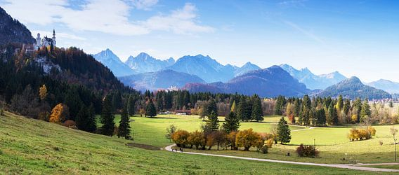 Kasteel Neuschwanstein en Alpenpanorama