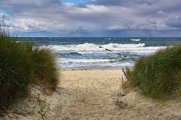 Chemin de plage sur Reiner Würz / RWFotoArt