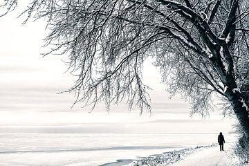 Winterwandeling von Bob Bleeker
