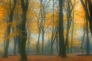 Der Märchenwald von Loulou Beavers