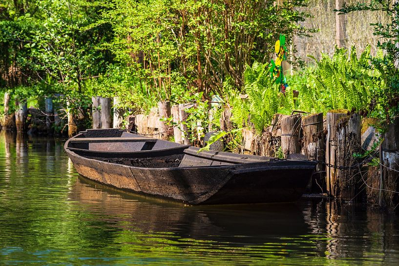 Barge in the Spreewald area near Luebbenau, Germany van Rico Ködder