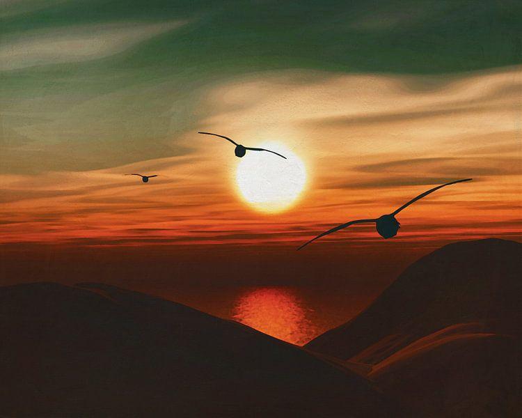 Zeemeeuwen bij zonsondergang 6 van Jan Keteleer